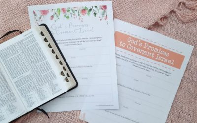 God's Promises to Covenant Israel Printable